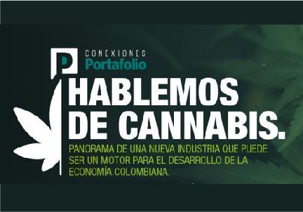 Foro Conexiones Portafolio: Hablemos de Cannabis