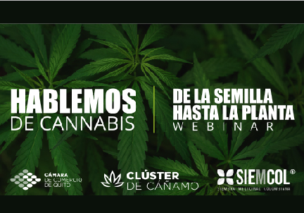 """Webinar """"De la semilla hasta la planta"""""""